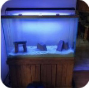 110 gallon fish tank for Sale in Chicago, IL