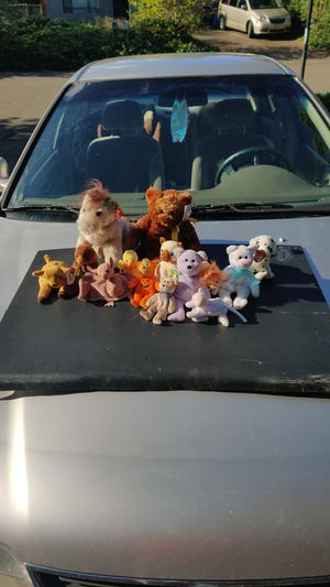 Older Beanie babies for Sale in Vancouver, WA