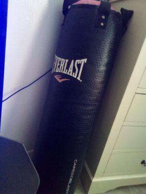 Everlast punching bag for Sale in Belle Isle, FL