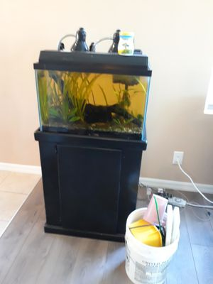 Complete 20 gallon planted aquarium with extras for Sale in Long Beach, CA
