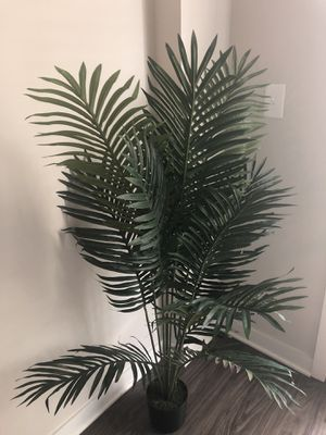 STILL AVAILABLE Nearly Natural Paradise Palm for Sale in Greenville, SC