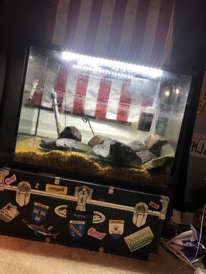 TopFin 37 Gal Aquarium with EVERYTHING for Sale in Manassas, VA