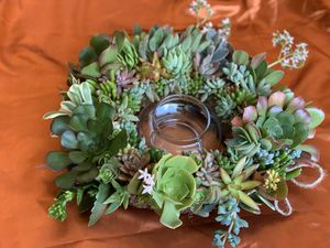"10"" D. Live succulent wreath with candle holder for Sale in Cupertino, CA"