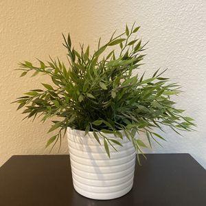 Artificial Plant for Sale in Dallas, TX