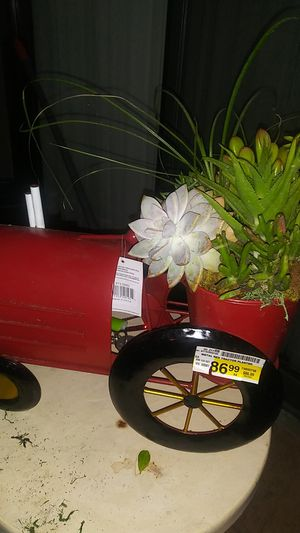 Tractor full of succulents for Sale in Westminster, CA