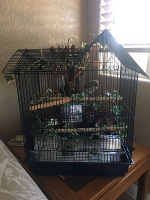 Black bird cage for Sale in Spring Valley, CA