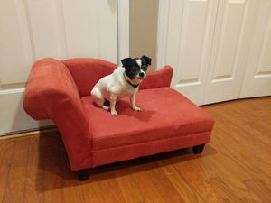 Adorable dog couch/bed for Sale in Holly Springs, NC