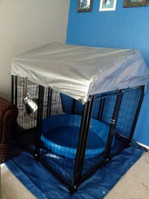 4x4x4 kennel for Sale in Phoenix, AZ