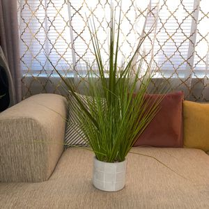 Faux Grass Plant for Sale in Philadelphia, PA