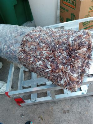 Light brown multi colored shag rug from AFW for Sale in Littleton, CO
