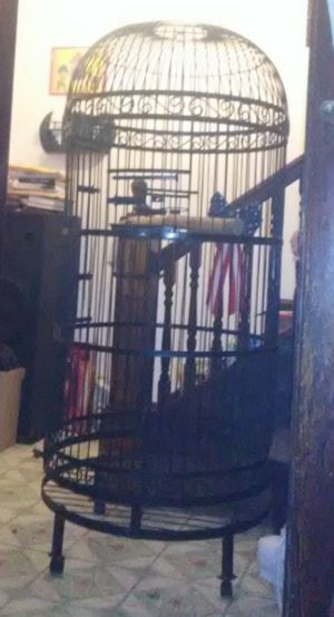 Bird/Parrot Wrought Iron Cage With Perch for Sale in Columbus, OH