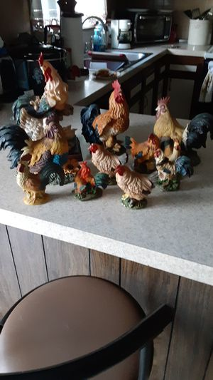 21 Roosters and chickens all to gether for Sale in Kernersville, NC