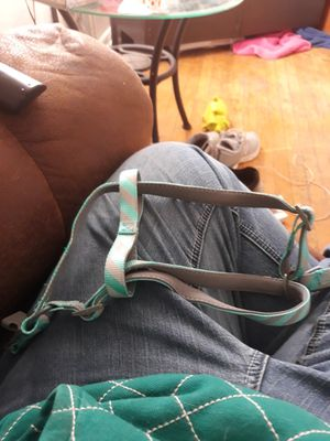 Step-in dog harness sz.med for Sale in Fall Creek, WI