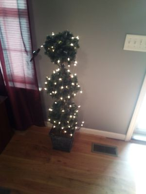 Light up plant.2 for Sale in Bell Buckle, TN