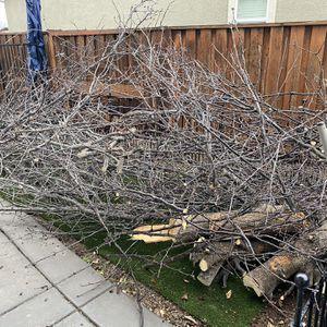 Free Fire Wood for Sale in Oakley, CA