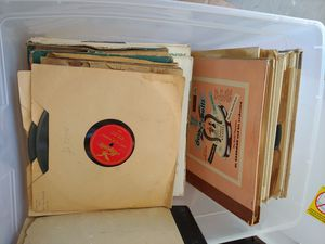 Lot of Vinyl Records for Sale in Tampa, FL