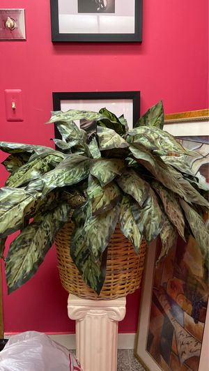 Fake plant for Sale in Bloomfield Hills, MI