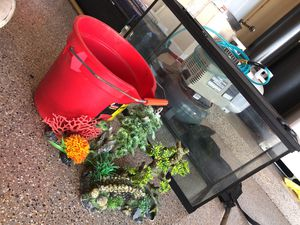 29 gallon fish or reptile tank with decorations aquarium for Sale in Scottsdale, AZ