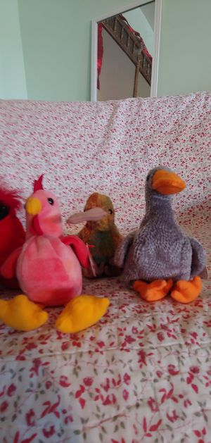 Ty beanie baby birds for Sale in Queens, NY