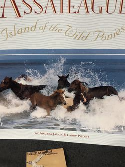 Assateague Island Of The Ponies Book for Sale in Greensburg,  PA