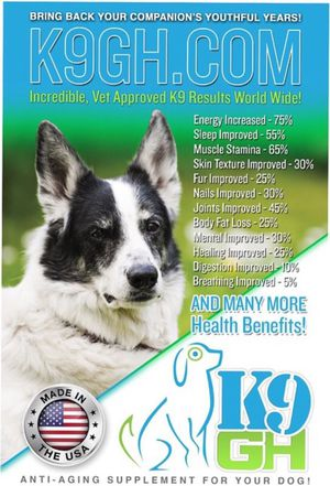 K9GH dog supplement for Sale in Traverse City, MI