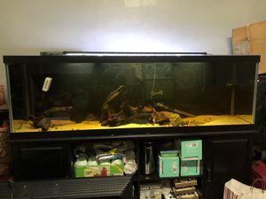 125 Gallon Fish Tank for Sale in Pinole, CA