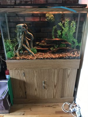 Fish tank for Sale in Bayville, NY
