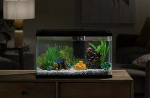 10 Gallon Aquarium Set / Fish Tank for Sale in The Bronx, NY