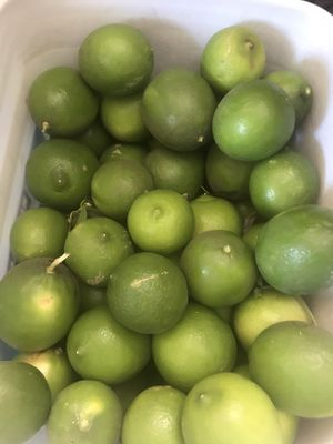 Limes( fresh large organic grown) for Sale in Modesto, CA