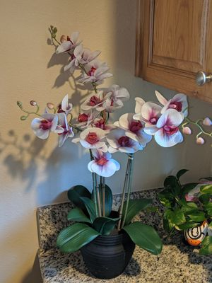 Light Purple/pinkish Artificial Orchid 🌺 for Sale in Placentia, CA