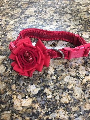 Collar para perro grande for Sale in Hialeah, FL