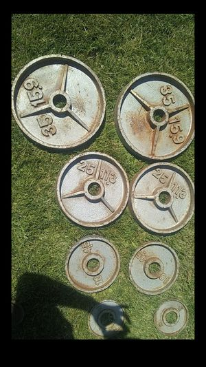 Olympic weights (((((looking to trade for Olympic bench/squat))))) for Sale in Pasco, WA