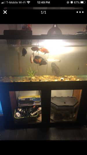 55 gallon tank and stand for Sale in Cleveland, OH