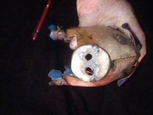 $9- Metal Table Pig for Sale in Huntsville, AL