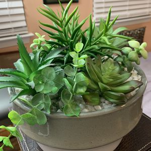 Beautiful Artificial Assorted Succulents in grey and White Ceramic Centerpiece $40 for Sale in Fairfax, VA