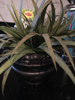 Fake plant and plant holder for Sale in Lake Mary, FL
