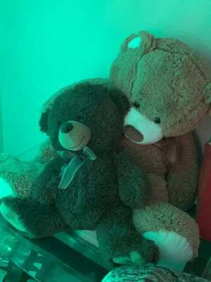GIANT TEDDY AND NORMAL SIZE TEDDY BEAR for Sale in Los Angeles, CA