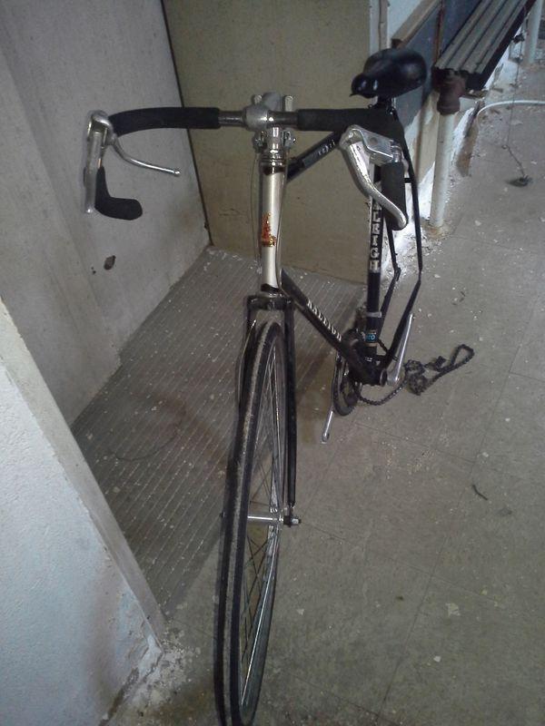 raleigh capri road bike frame