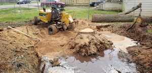 Stump grinding for Sale in New Caney, TX
