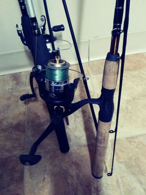 3 fishing poles and reels Shakespeare for Sale in TEMPLE TERR, FL