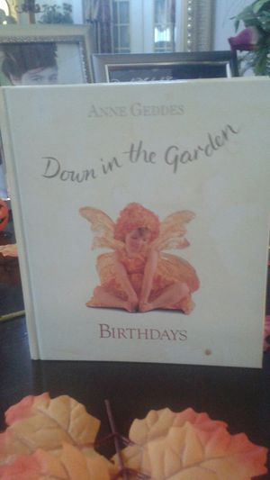 ANNE GEDDES DOWN IN THE GARDEN for Sale in Sebring, FL