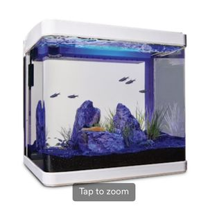 5.2 Gallon Fish Tank for Sale in Queens, NY