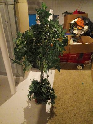 Decorative tree for Sale in Grove City, OH