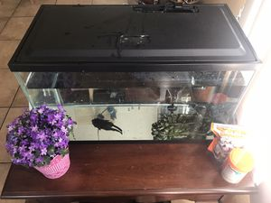 10 gallon fish tank complete setup with fish for Sale in Signal Hill, CA