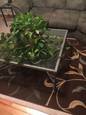 Glass Coffee Table with matching End Table for Sale in Charlottesville, VA