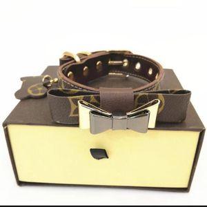 Dog Collar Set for Sale in Vineyard, UT