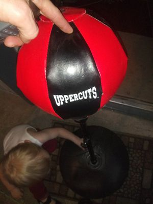 Uppercut bag... On spring and adjustable height for Sale in Spring, TX
