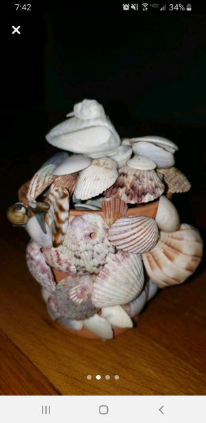 Glass pot with Florida seashells for Sale in Peoria, IL