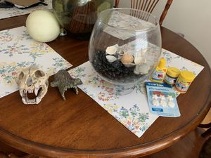 Beta fish tank kit! for Sale in Richmond, VA