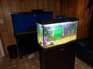 Top fin 29 gallon tank for Sale in Floral Park, NY